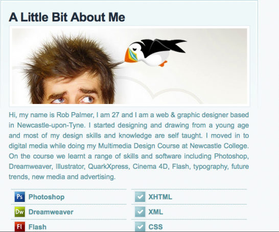 rob palmer 546x455 20 Creative Example of Blog Bio Pages