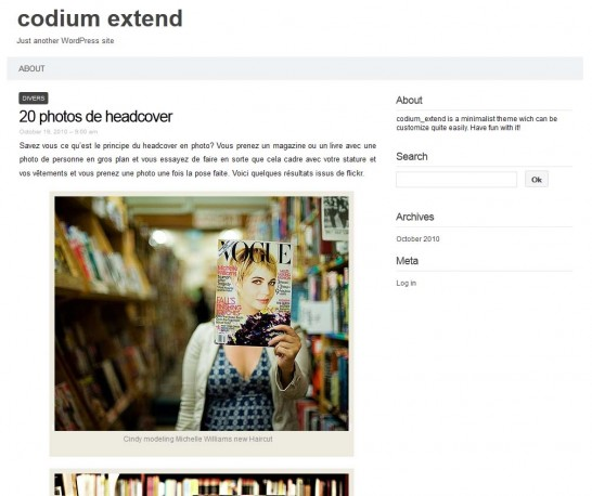 codium responsive 546x458 22 Free WordPress Themes with Responsive Layout