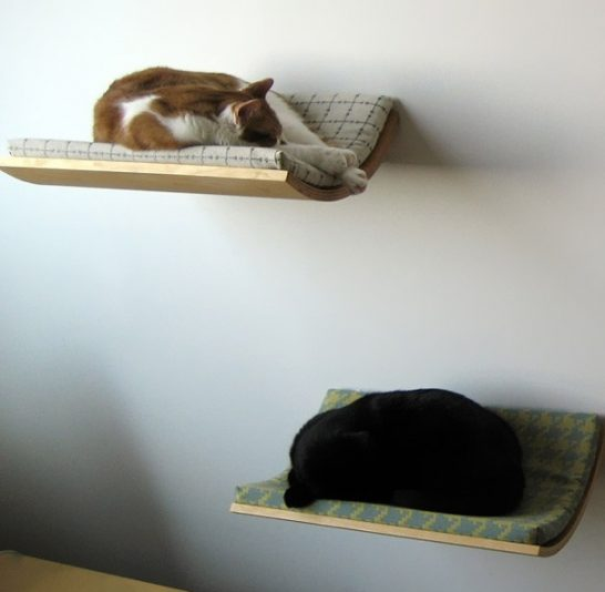 creative beds cat bed 546x534 Extraordinary and Unusual Bed Designs Ideas