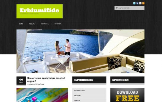erbiumifide 546x343 47 of the Best Dark and Black Free Wordpress Themes