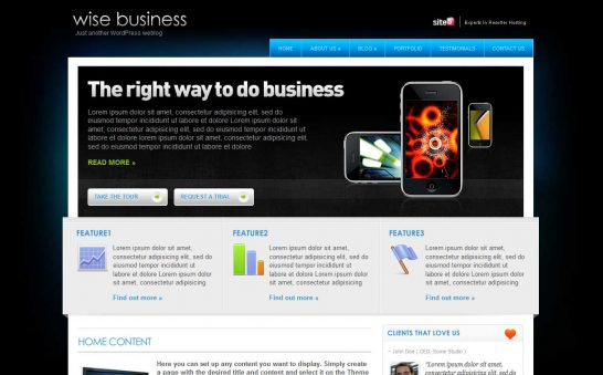 wisebusiness 546x339 47 of the Best Dark and Black Free Wordpress Themes