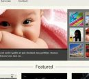 Americiumic Free WordPress Theme
