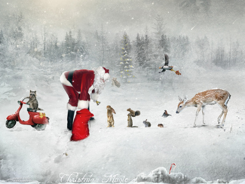 20+ Awesome Christmas Wallpaper Collections for Your Desktop