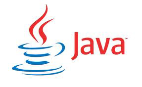 java Role of Microsoft Technologies for Web Development