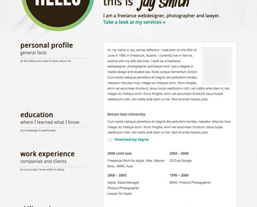 WPTidBits  Wordpress Resume Template
