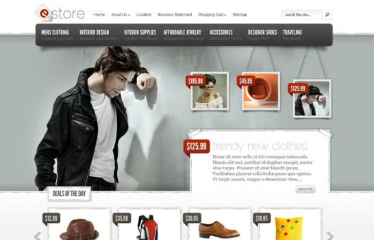 estore theme 546x350 10 High Quality Premium WordPress Themes
