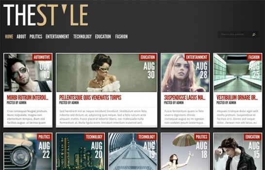 the style theme 546x352 10 High Quality Premium WordPress Themes