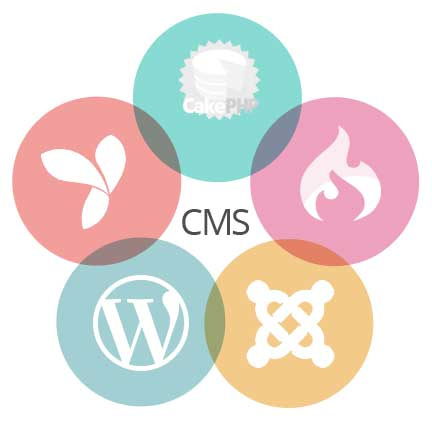 Qualities of ideal CMS Developers