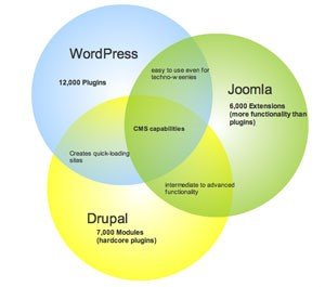 Joomla,Drupal or Wordpress - which one is the best CMS?